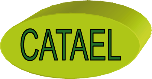 catael tableautier cablage de tableaux electrique - catael recrute